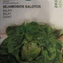 Salaatti, jäävuorisalaatti 'Maikönig'