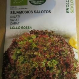 Salaatti, bataviasalaatti 'Lollo Rossa' (Luomu)